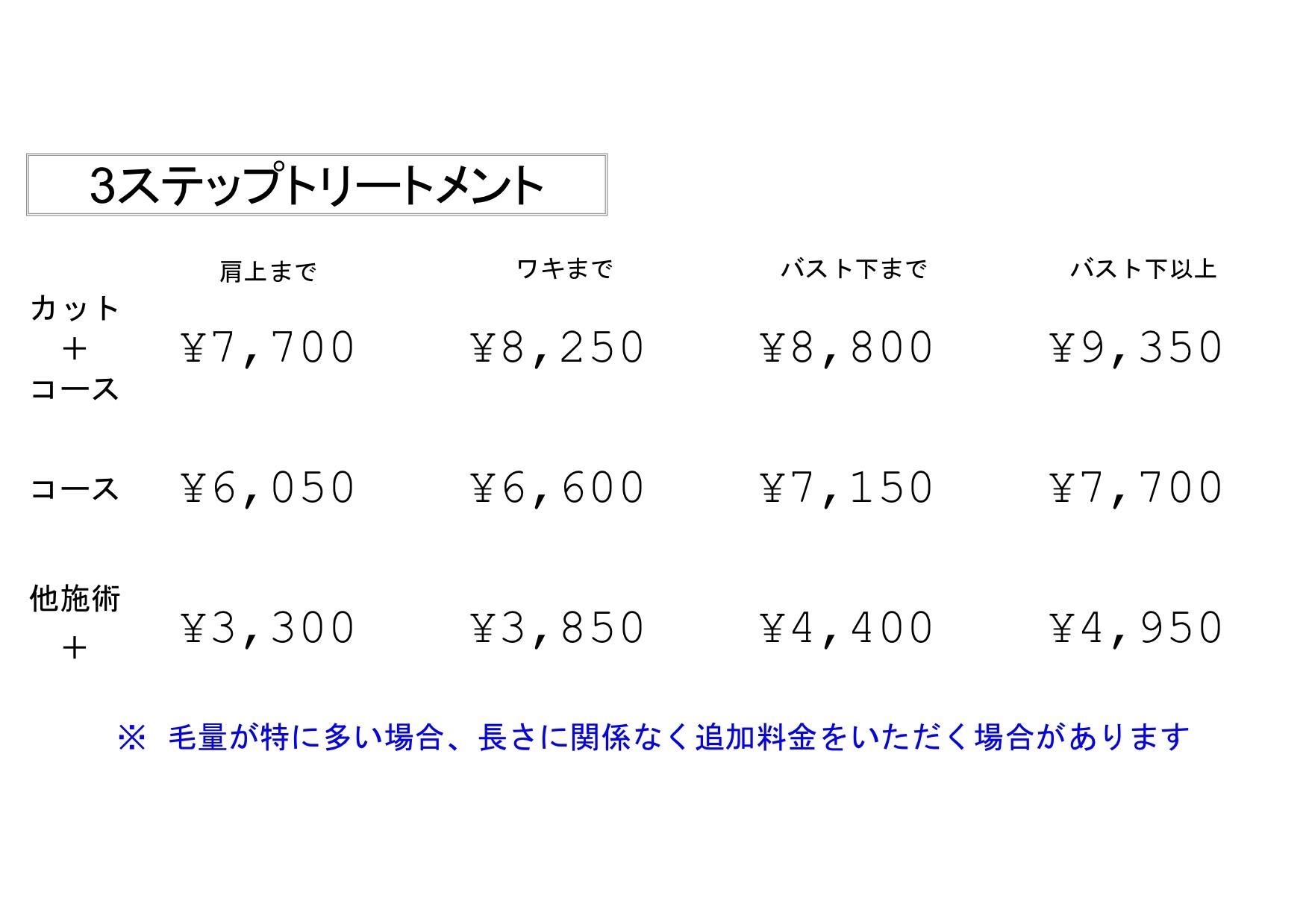 3ステップトリートメント料金表